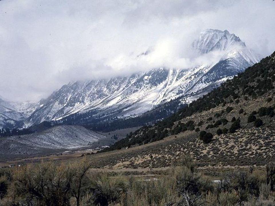 S S ierra Nevada Nevada Sierra, pasmo górskie w Ameryce Północnej, na obszarze Stanów Zjednoczonych, wschodzące w skład Kordylierów. Położone pomiędzy