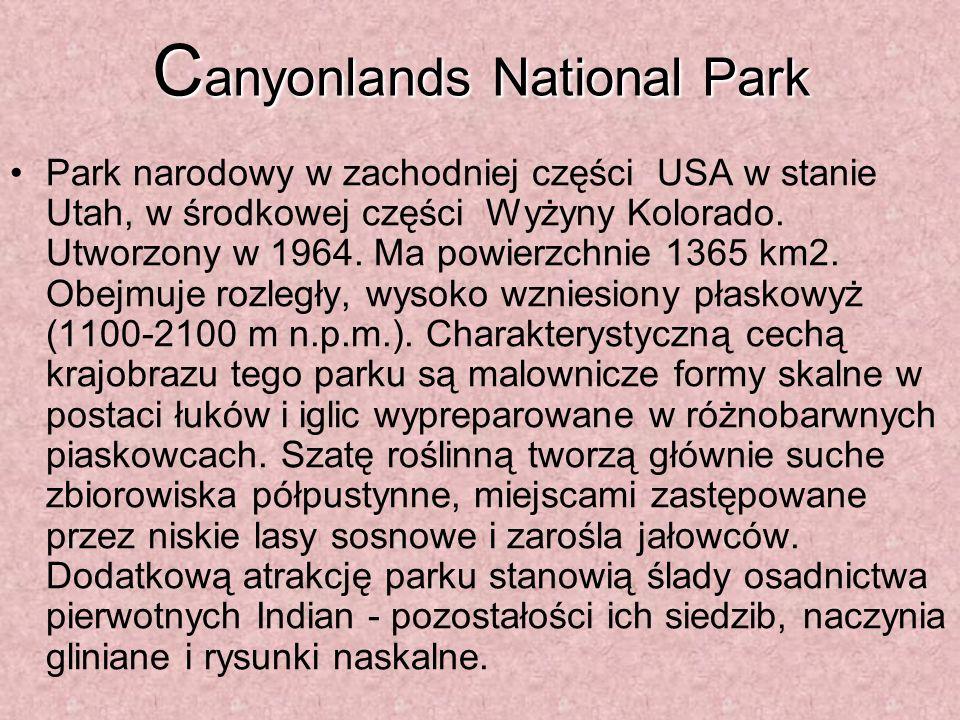 C anyonlands National Park Park narodowy w zachodniej części USA w stanie Utah, w środkowej części Wyżyny Kolorado.