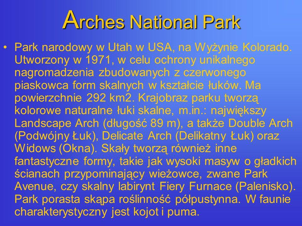 A rches National Park Park narodowy w Utah w USA, na Wyżynie Kolorado.