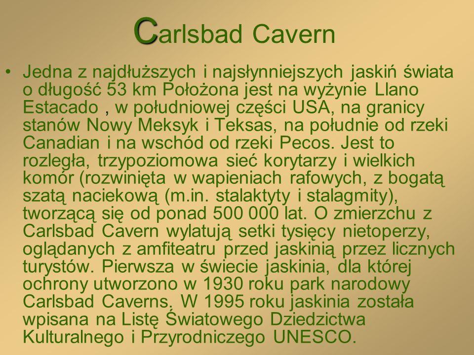 C C arlsbad Cavern Jedna z najdłuższych i najsłynniejszych jaskiń świata o długość 53 km Położona jest na wyżynie Llano Estacado, w południowej części USA, na granicy stanów Nowy Meksyk i Teksas, na południe od rzeki Canadian i na wschód od rzeki Pecos.