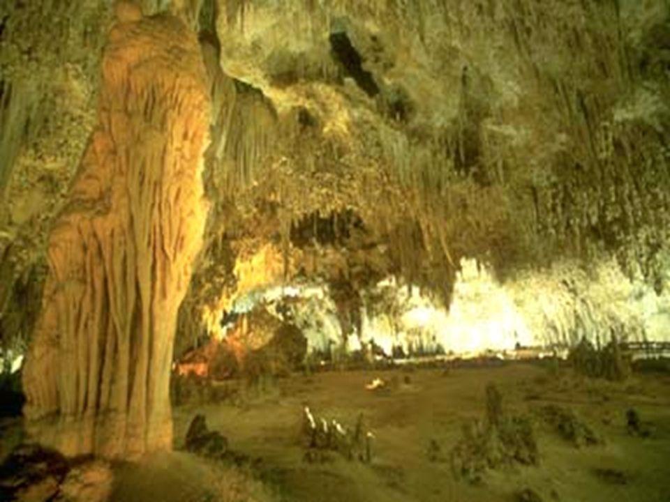 C C arlsbad Cavern Jedna z najdłuższych i najsłynniejszych jaskiń świata o długość 53 km Położona jest na wyżynie Llano Estacado, w południowej części
