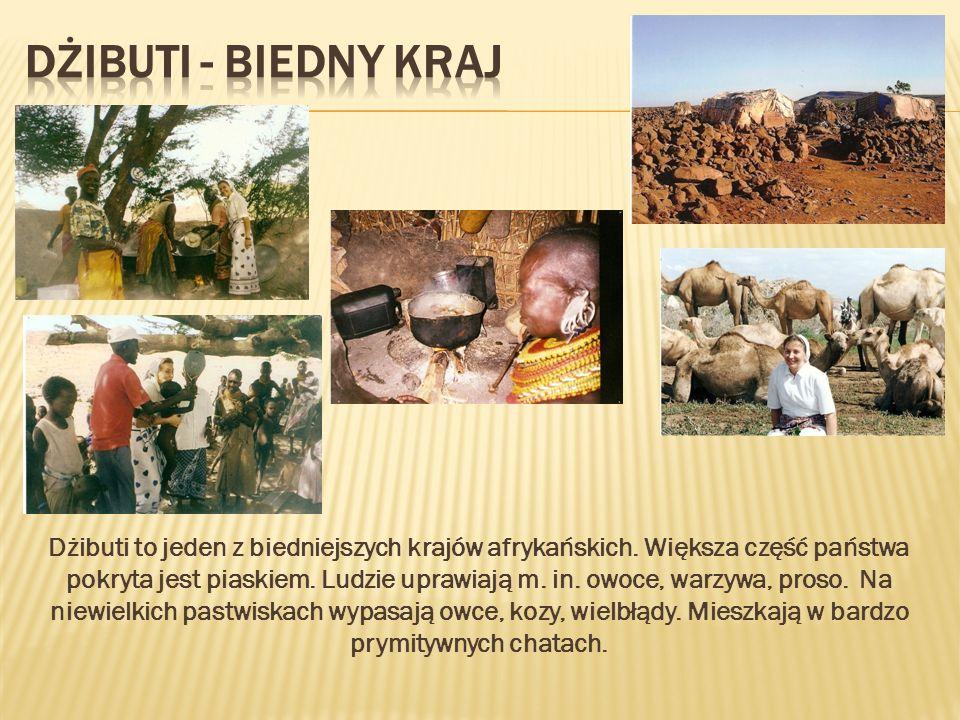 Dżibuti to jeden z biedniejszych krajów afrykańskich. Większa część państwa pokryta jest piaskiem. Ludzie uprawiają m. in. owoce, warzywa, proso. Na n