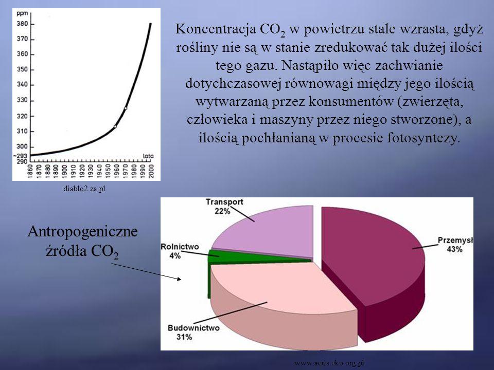 Antropogeniczne źródła CO 2 www.aeris.eko.org.pl Koncentracja CO 2 w powietrzu stale wzrasta, gdyż rośliny nie są w stanie zredukować tak dużej ilości tego gazu.