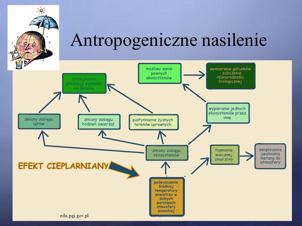 Antropogeniczne nasilenie edu.pgi.gov.pl