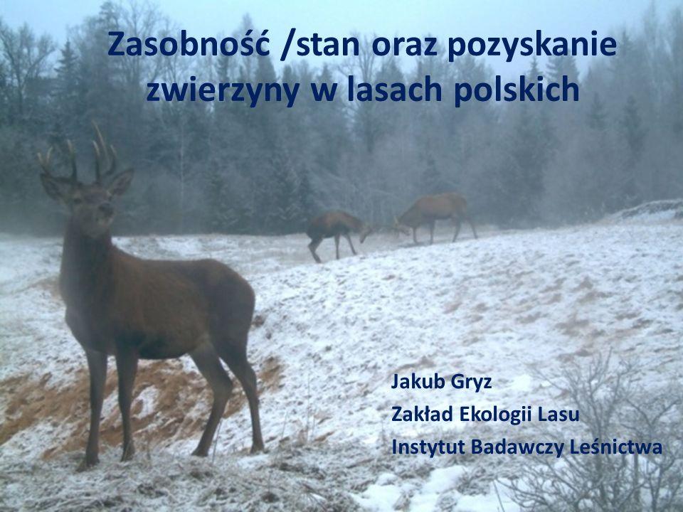 Zasobność /stan oraz pozyskanie zwierzyny w lasach polskich Jakub Gryz Zakład Ekologii Lasu Instytut Badawczy Leśnictwa