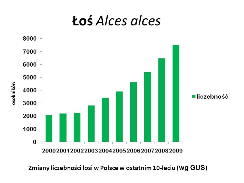 Lis Vulpes vulpes tys. osobników Zmiany liczebności lisów w Polsce w ostatnim 10-leciu