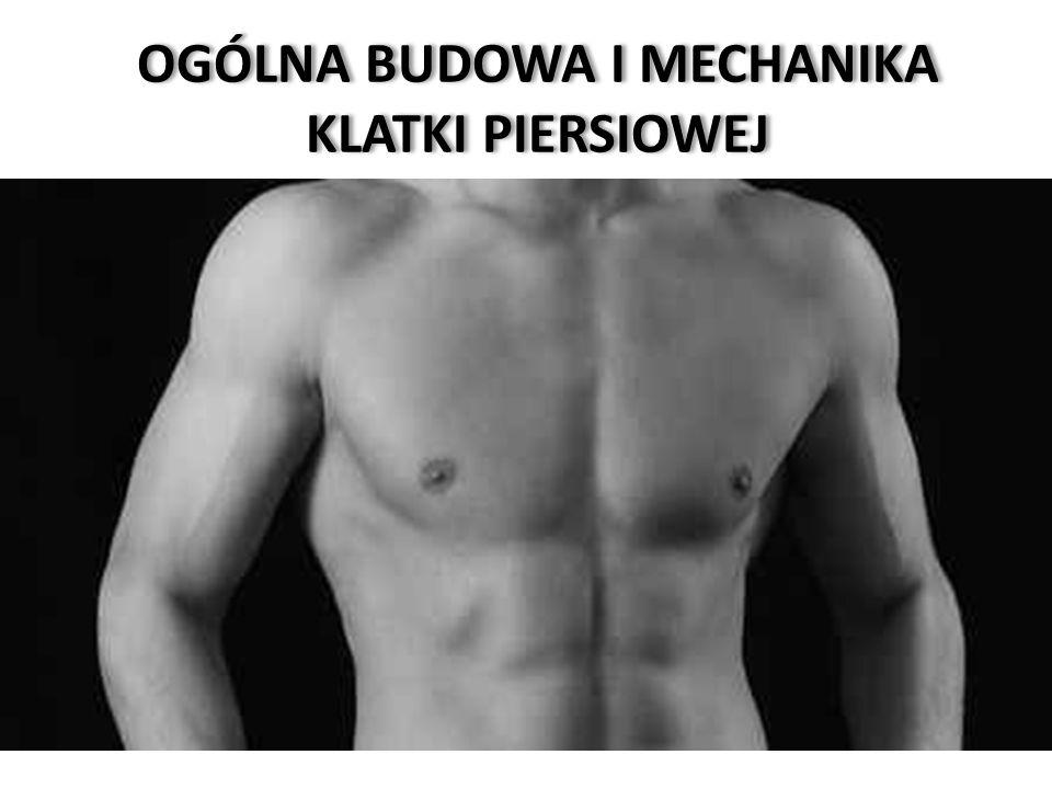 W skład szkieletu klatki piersiowej wchodzi: 12 kręgów piersiowych, 12 par żeber i mostek.