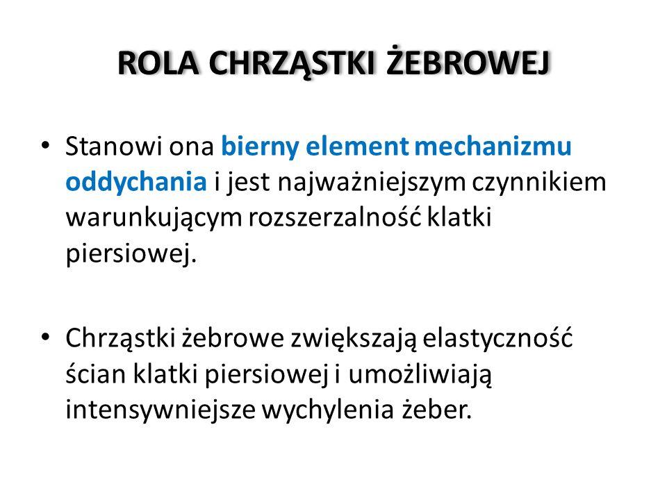 POŁĄCZENIA ŻEBER Z MOSTKIEM c.d.