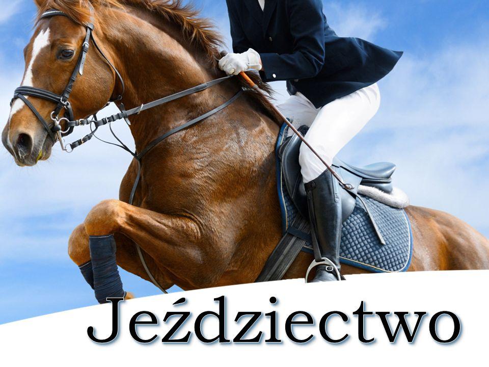 Jeździectwo to dyscyplina sportowa obejmująca wszystkie konkurencje sportów konnych wraz z powożeniem.