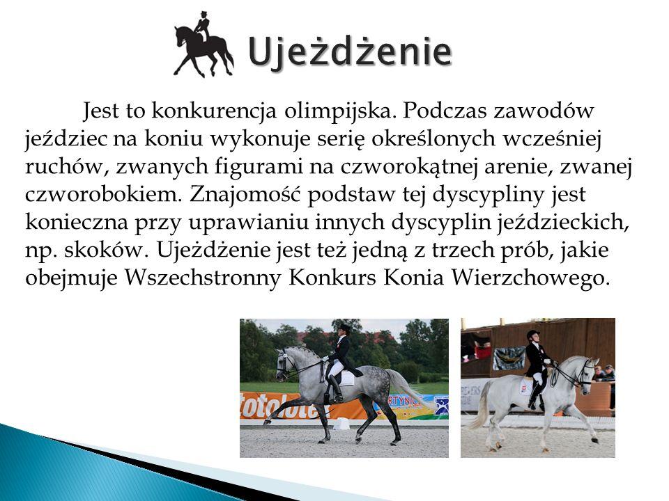 To jedna z jeździeckich dyscyplin sportowych.