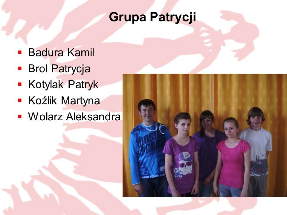 Grupa Patrycji Badura Kamil Brol Patrycja Kotylak Patryk Koźlik Martyna Wolarz Aleksandra