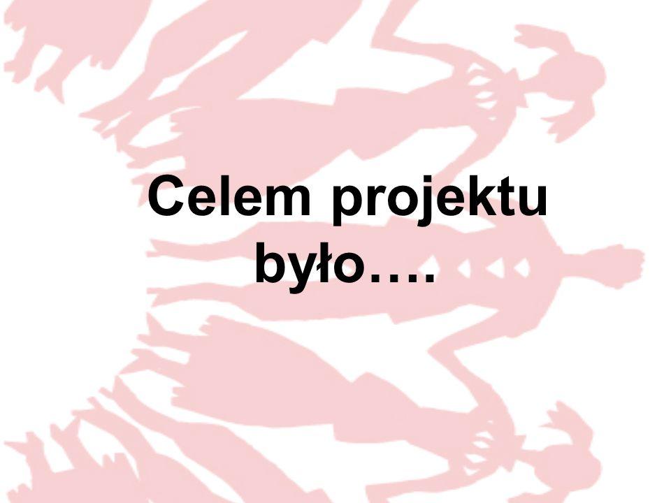 Celem projektu było….