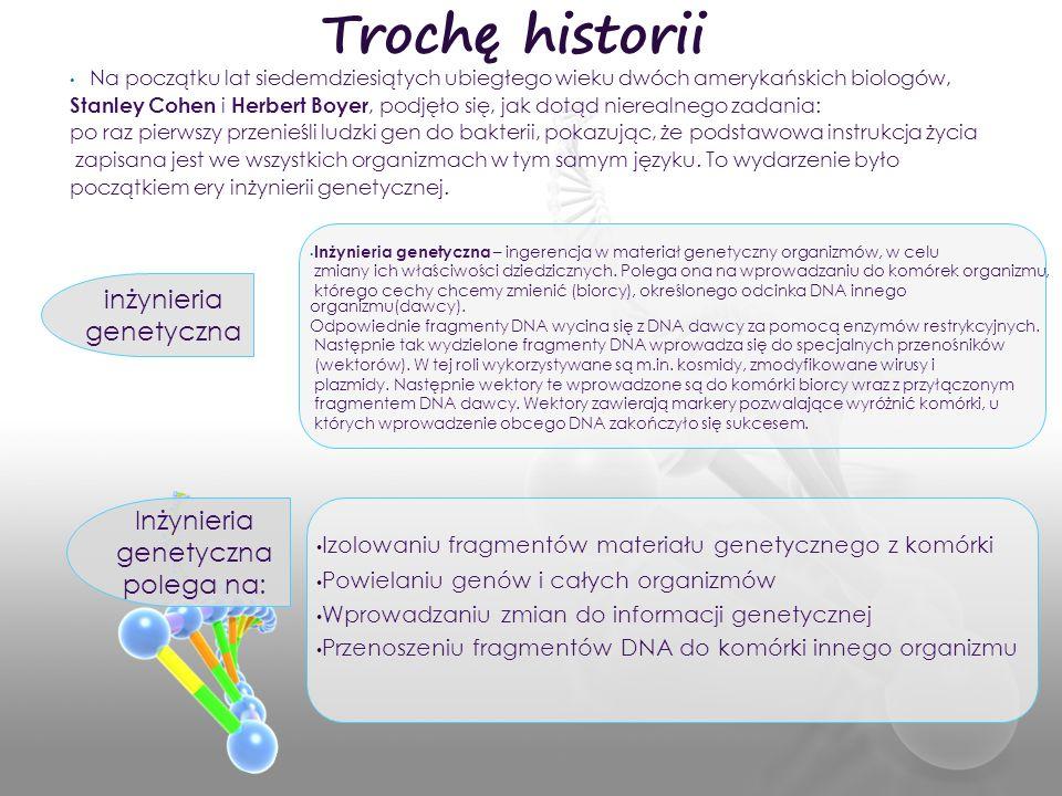 Izolowaniu fragmentów materiału genetycznego z komórki Powielaniu genów i całych organizmów Wprowadzaniu zmian do informacji genetycznej Przenoszeniu