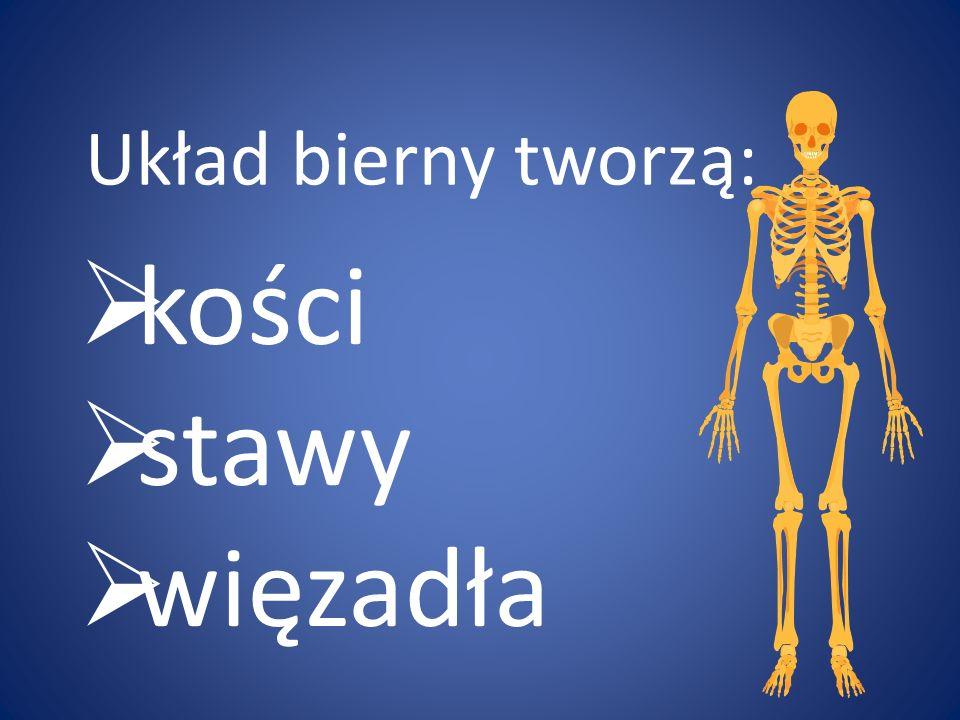 dzielimy na: a) układ ruchu czynny b) układ ruchu bierny Opracowała: Agnieszka Głowacka