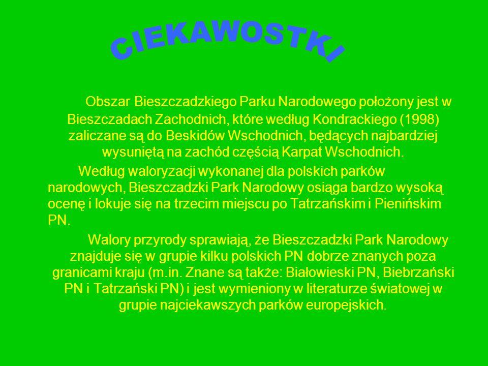 Obszar Bieszczadzkiego Parku Narodowego położony jest w Bieszczadach Zachodnich, które według Kondrackiego (1998) zaliczane są do Beskidów Wschodnich,