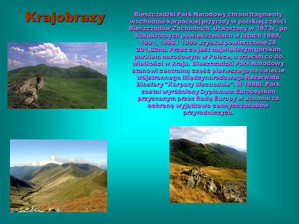 Bieszczadzki Park Narodowy chroni fragmenty wschodnio-karpackiej przyrody w polskiej części Bieszczadów Zachodnich. Utworzony w 1973r., po kilkukrotny