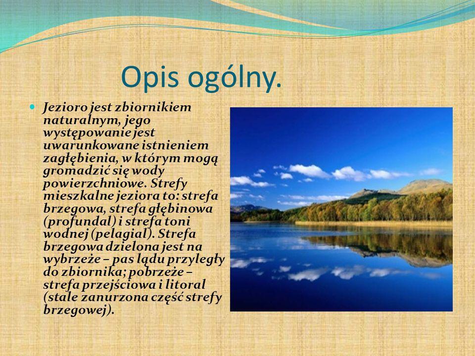 Opis ogólny. Jezioro jest zbiornikiem naturalnym, jego występowanie jest uwarunkowane istnieniem zagłębienia, w którym mogą gromadzić się wody powierz
