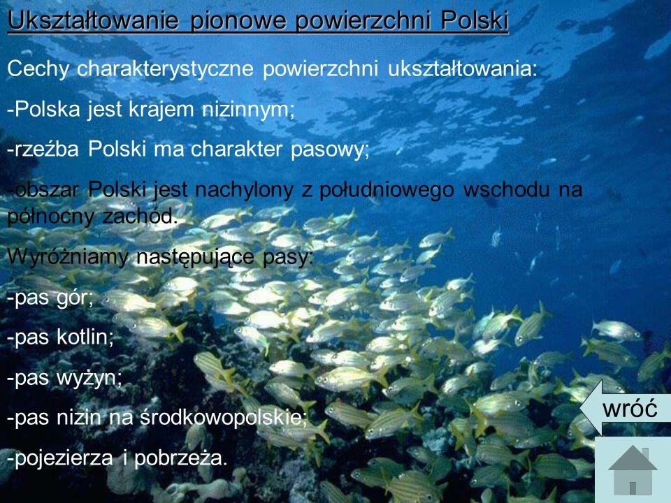 Ukształtowanie pionowe powierzchni Polski Cechy charakterystyczne powierzchni ukształtowania: -Polska jest krajem nizinnym; -rzeźba Polski ma charakter pasowy; -obszar Polski jest nachylony z południowego wschodu na północny zachód.