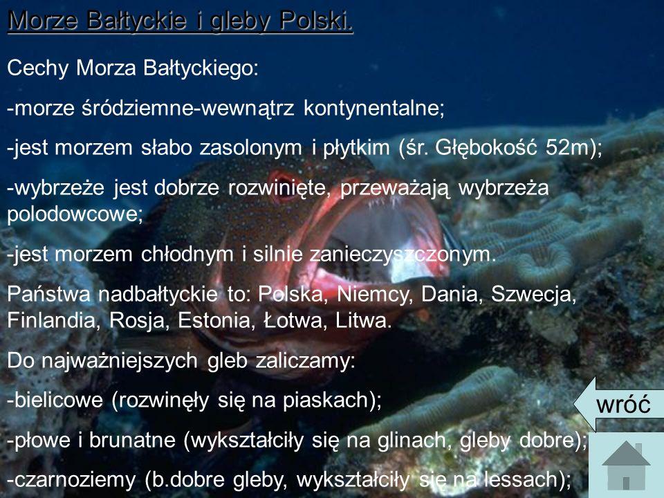 Morze Bałtyckie i gleby Polski. Cechy Morza Bałtyckiego: -morze śródziemne-wewnątrz kontynentalne; -jest morzem słabo zasolonym i płytkim (śr. Głęboko