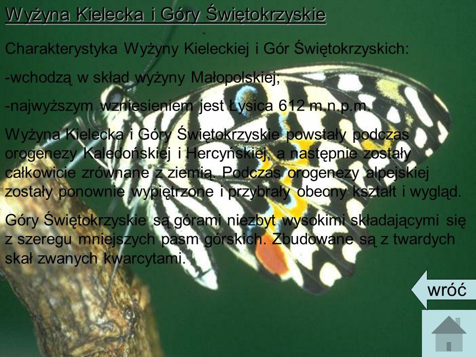 Wyżyna Kielecka i Góry Świętokrzyskie Charakterystyka Wyżyny Kieleckiej i Gór Świętokrzyskich: -wchodzą w skład wyżyny Małopolskiej; -najwyższym wzniesieniem jest Łysica 612 m.n.p.m.
