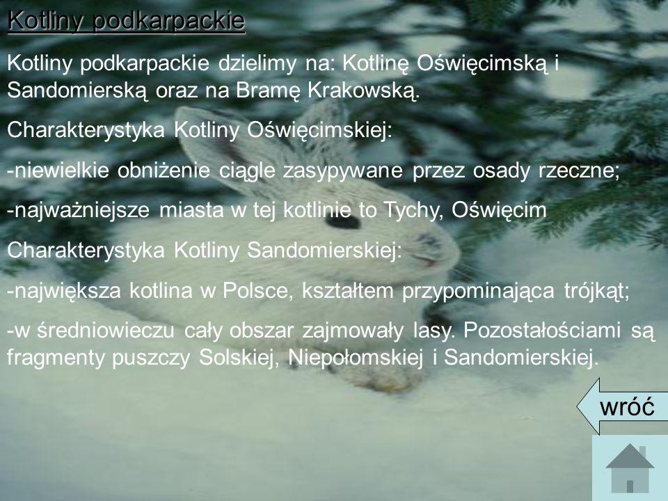 Kotliny podkarpackie Kotliny podkarpackie dzielimy na: Kotlinę Oświęcimską i Sandomierską oraz na Bramę Krakowską. Charakterystyka Kotliny Oświęcimski