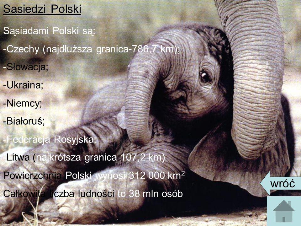 Sąsiedzi Polski Sąsiadami Polski są: -Czechy (najdłuższa granica-786,7 km); -Słowacja; -Ukraina; -Niemcy; -Białoruś; -Federacja Rosyjska; -Litwa (najkrótsza granica 107,2 km) Powierzchnia Polski wynosi 312 000 km 2.
