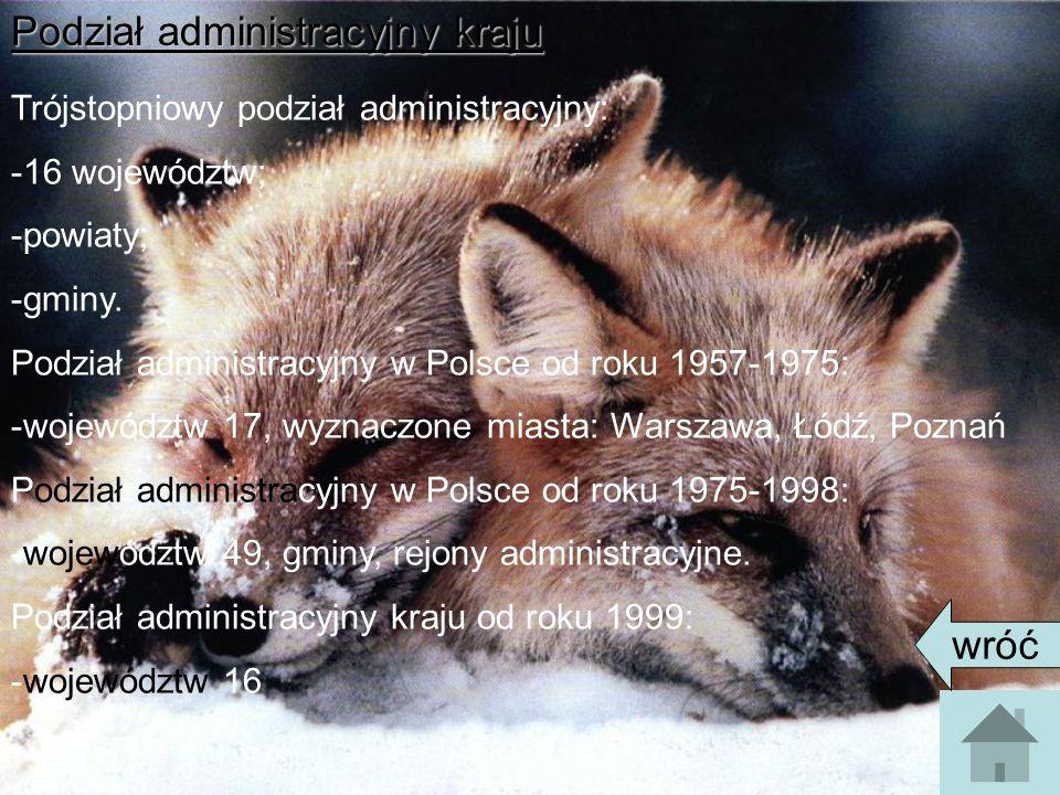 Podział administracyjny kraju Trójstopniowy podział administracyjny: -16 województw; -powiaty; -gminy.