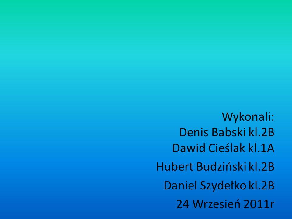 Wykonali: Denis Babski kl.2B Dawid Cieślak kl.1A Hubert Budziński kl.2B Daniel Szydełko kl.2B 24 Wrzesień 2011r