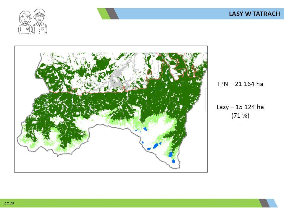TPN – 21 164 ha Lasy – 15 124 ha (71 %) LASY W TATRACH 2 z 20