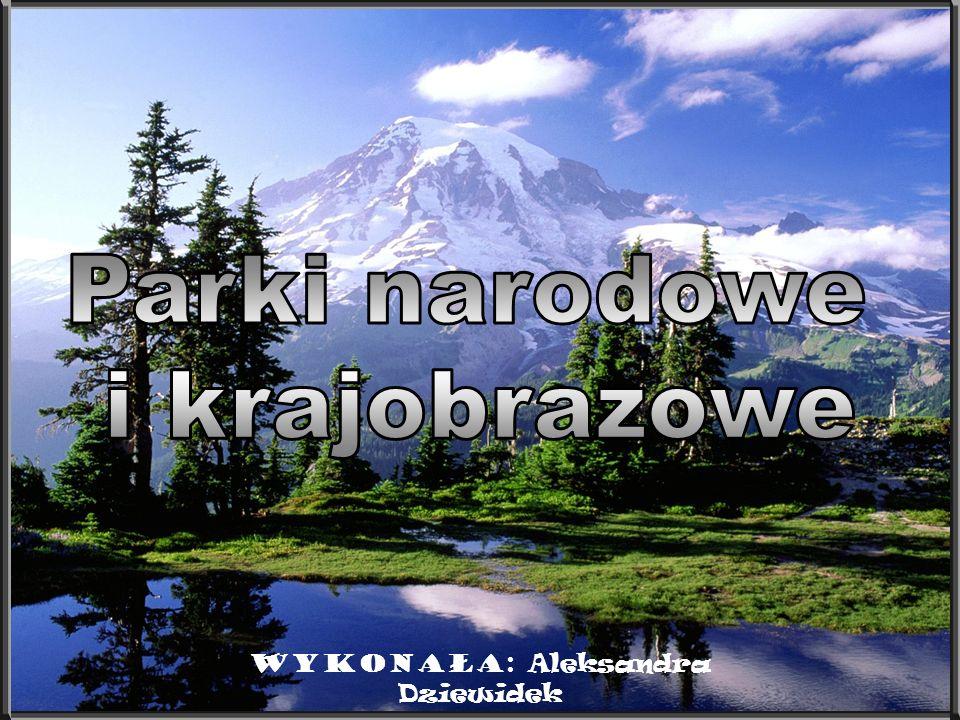 Linki http://pl.wikipedia.org/wiki/Parki_krajobrazowe_w_Polsce http://www.mos.gov.pl/kzpn/pl/wit_pl.htm Spis treści