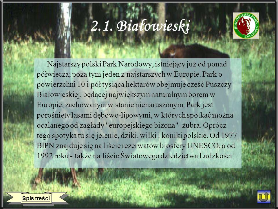 2.1. Białowieski Najstarszy polski Park Narodowy, istniejący już od ponad półwiecza; poza tym jeden z najstarszych w Europie. Park o powierzchni 10 i