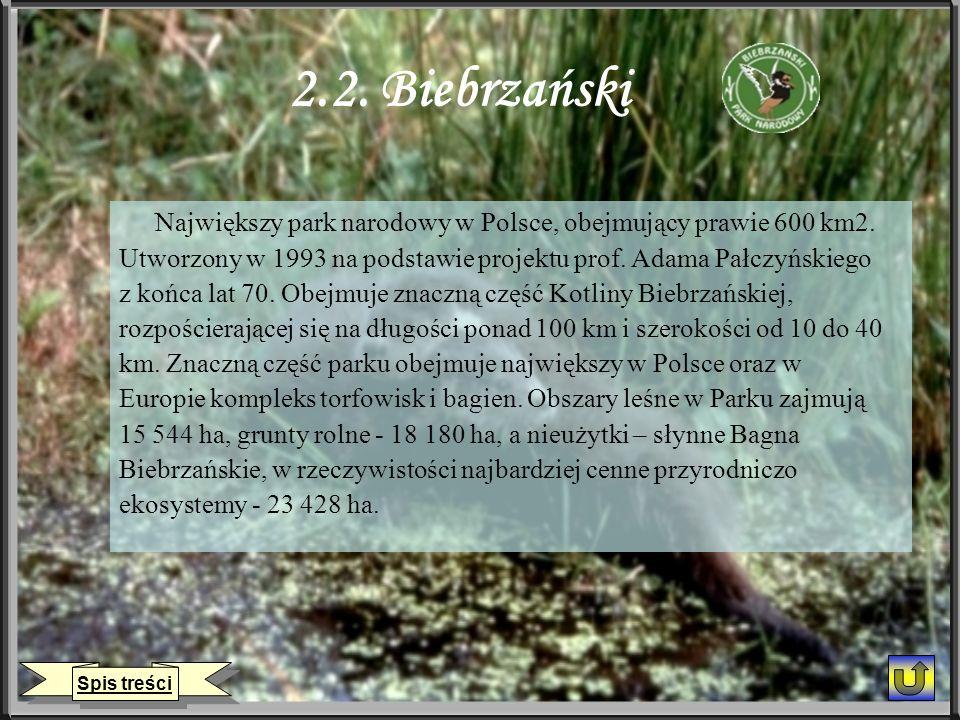 2.2. Biebrzański Największy park narodowy w Polsce, obejmujący prawie 600 km2. Utworzony w 1993 na podstawie projektu prof. Adama Pałczyńskiego z końc