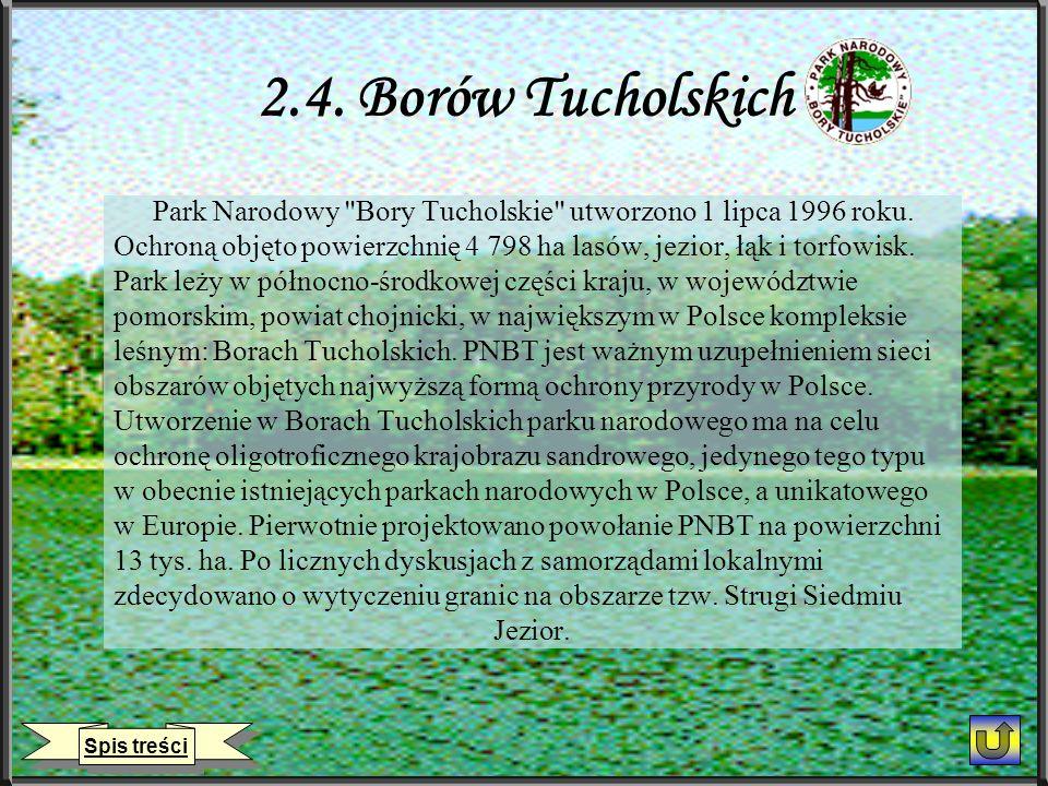 2.4.Borów Tucholskich Park Narodowy Bory Tucholskie utworzono 1 lipca 1996 roku.