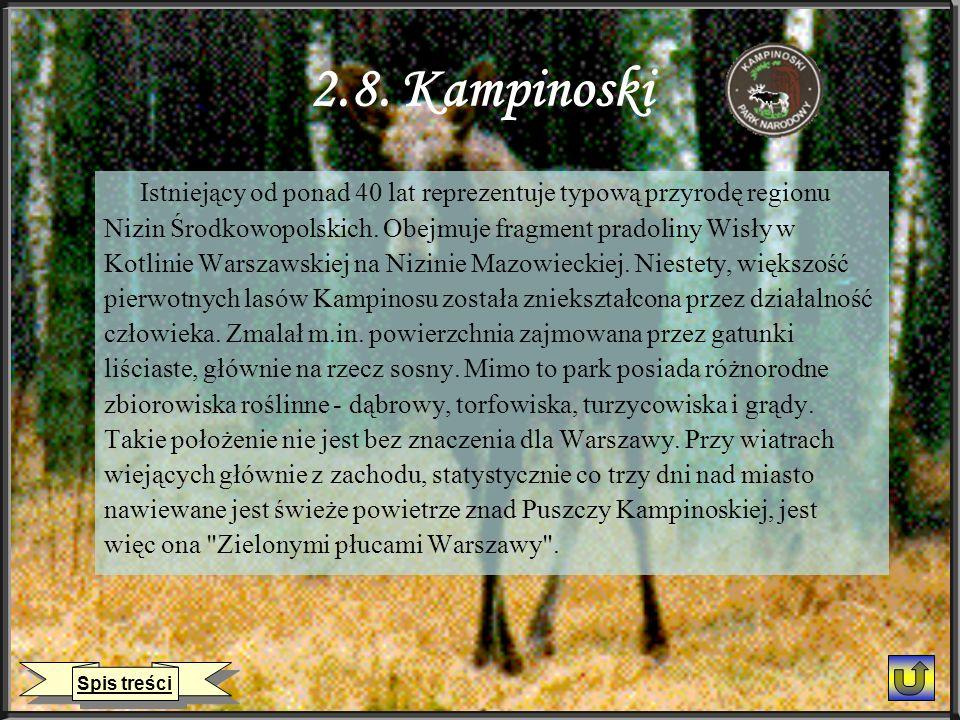 2.8. Kampinoski Istniejący od ponad 40 lat reprezentuje typową przyrodę regionu Nizin Środkowopolskich. Obejmuje fragment pradoliny Wisły w Kotlinie W