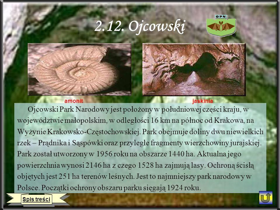 2.12. Ojcowski Ojcowski Park Narodowy jest położony w południowej części kraju, w województwie małopolskim, w odległości 16 km na północ od Krakowa, n