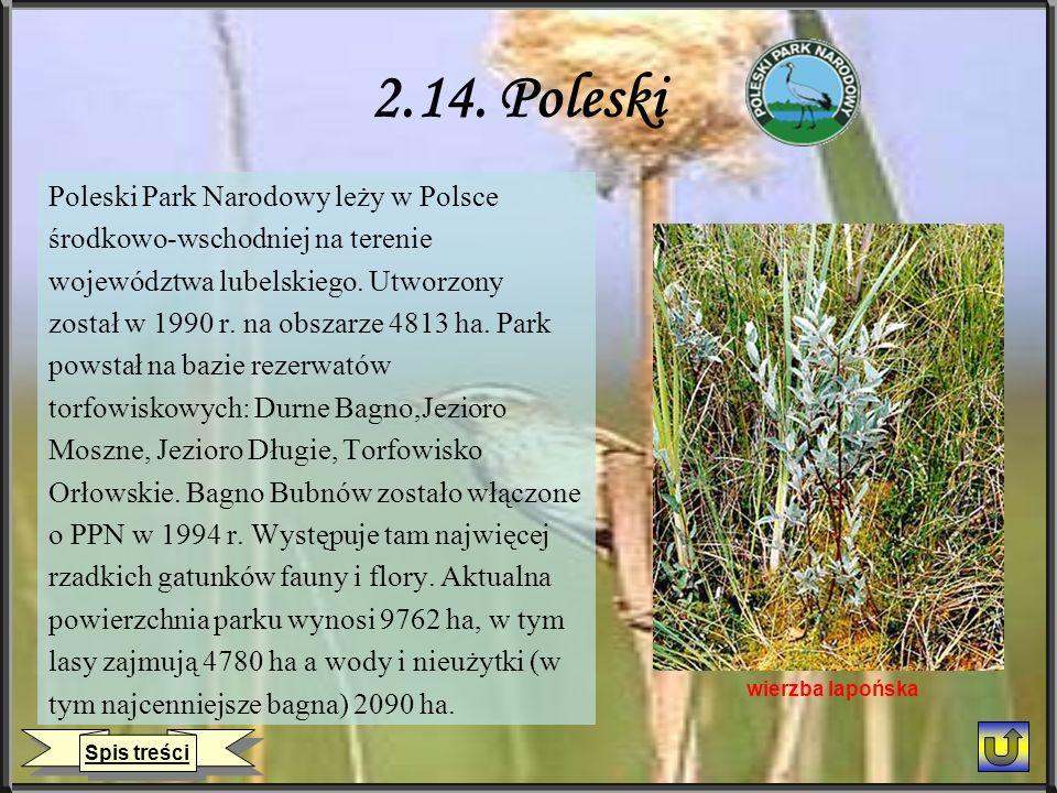 2.14. Poleski Poleski Park Narodowy leży w Polsce środkowo-wschodniej na terenie województwa lubelskiego. Utworzony został w 1990 r. na obszarze 4813