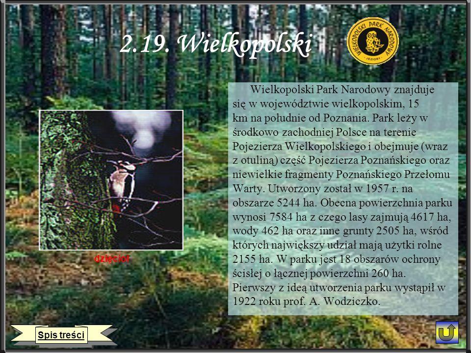 2.19. Wielkopolski Wielkopolski Park Narodowy znajduje się w województwie wielkopolskim, 15 km na południe od Poznania. Park leży w środkowo zachodnie