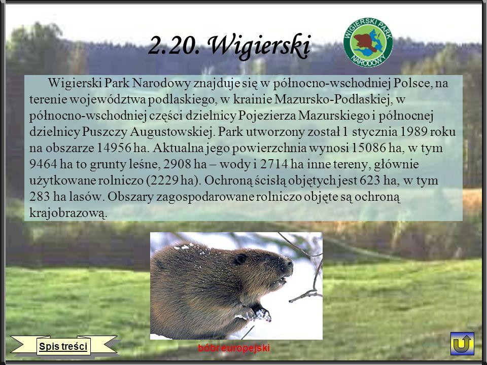 2.20. Wigierski Wigierski Park Narodowy znajduje się w północno-wschodniej Polsce, na terenie województwa podlaskiego, w krainie Mazursko-Podlaskiej,
