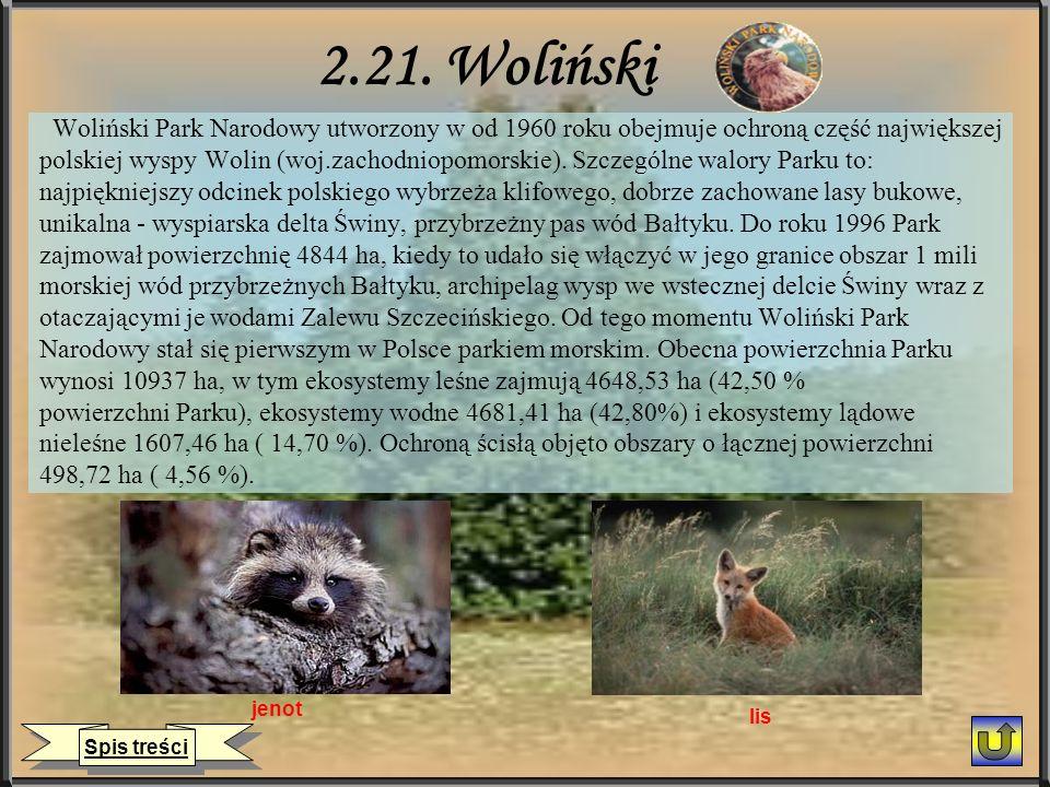2.21. Woliński Woliński Park Narodowy utworzony w od 1960 roku obejmuje ochroną część największej polskiej wyspy Wolin (woj.zachodniopomorskie). Szcze
