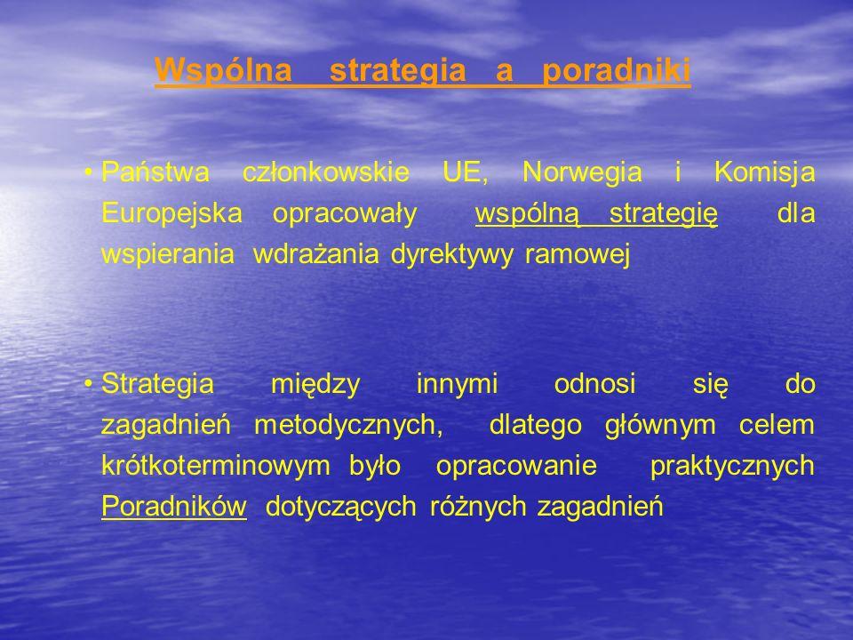 Wspólna strategia a poradniki Państwa członkowskie UE, Norwegia i Komisja Europejska opracowały wspólną strategię dla wspierania wdrażania dyrektywy r