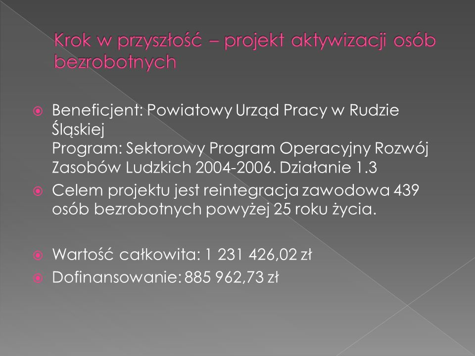 Beneficjent: Powiatowy Urząd Pracy w Rudzie Śląskiej Program: Sektorowy Program Operacyjny Rozwój Zasobów Ludzkich 2004-2006. Działanie 1.3 Celem proj