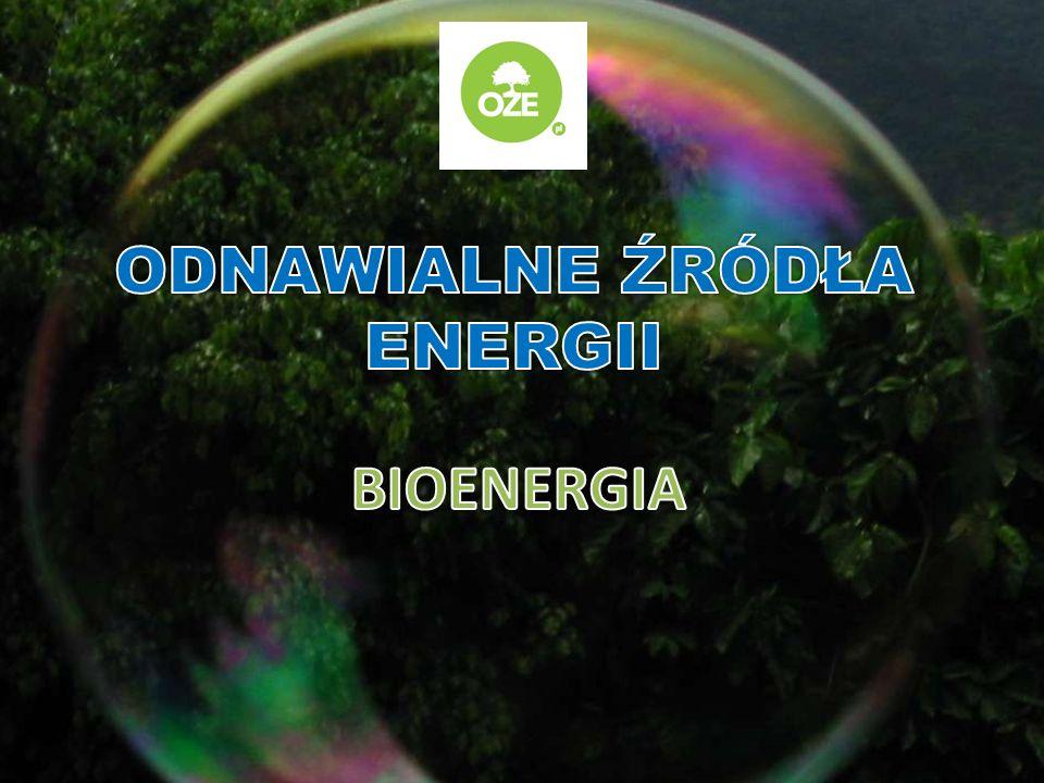 Rośliny energetyczne powinny charakteryzować się dużym przyrostem rocznym, wysoką wartością opałową, znaczną odpornością na choroby i szkodniki oraz stosunkowo niewielkimi wymaganiami glebowymi.