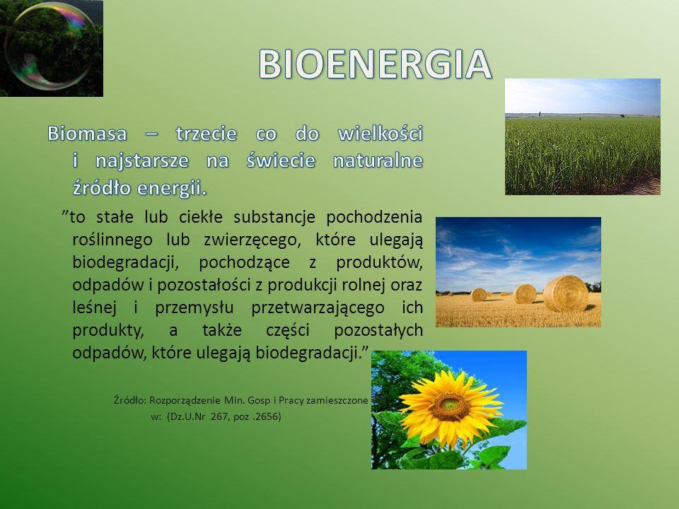 www.mg.gov.pl www.fonecology.pl/Biomasa www.wolmark.pl www.biomasa.org www.bioalians.pl/biogaz-technologia www.oze.pl www.mae.com.pl