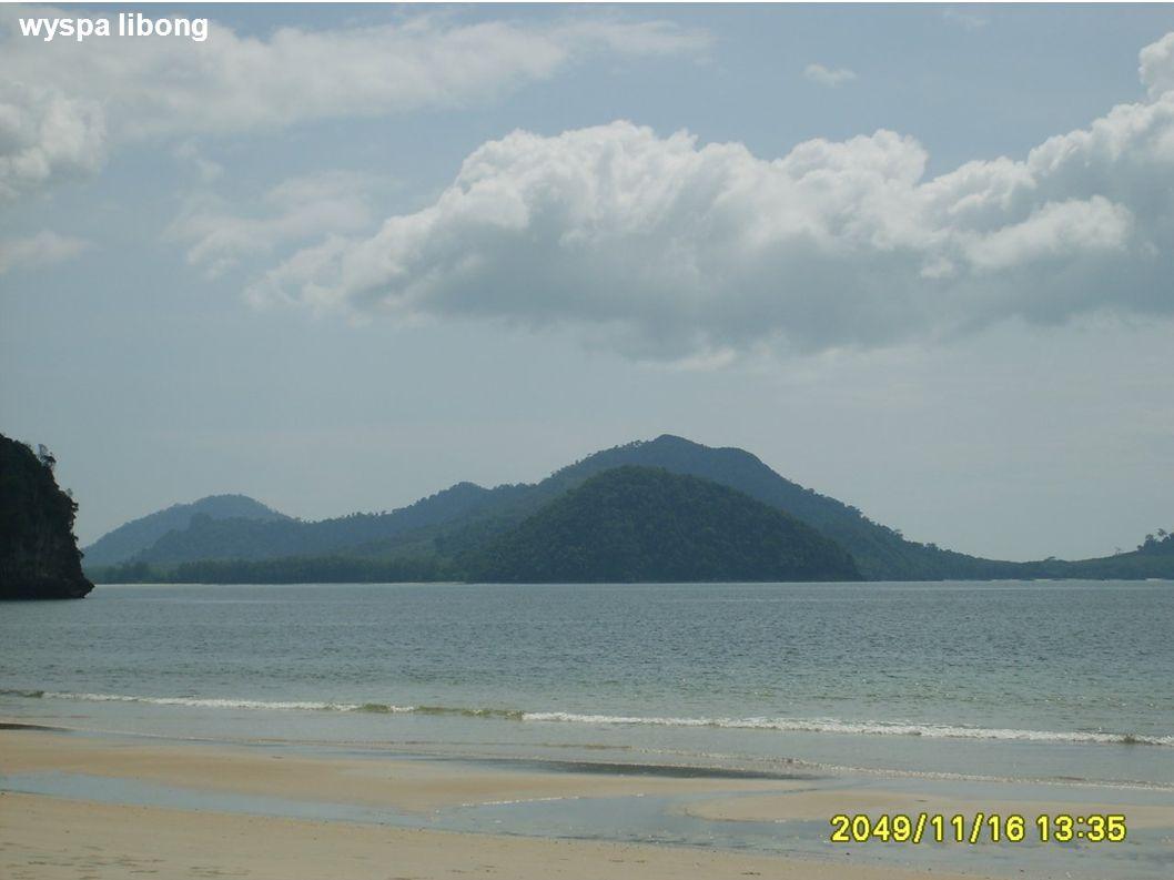wyspa libong