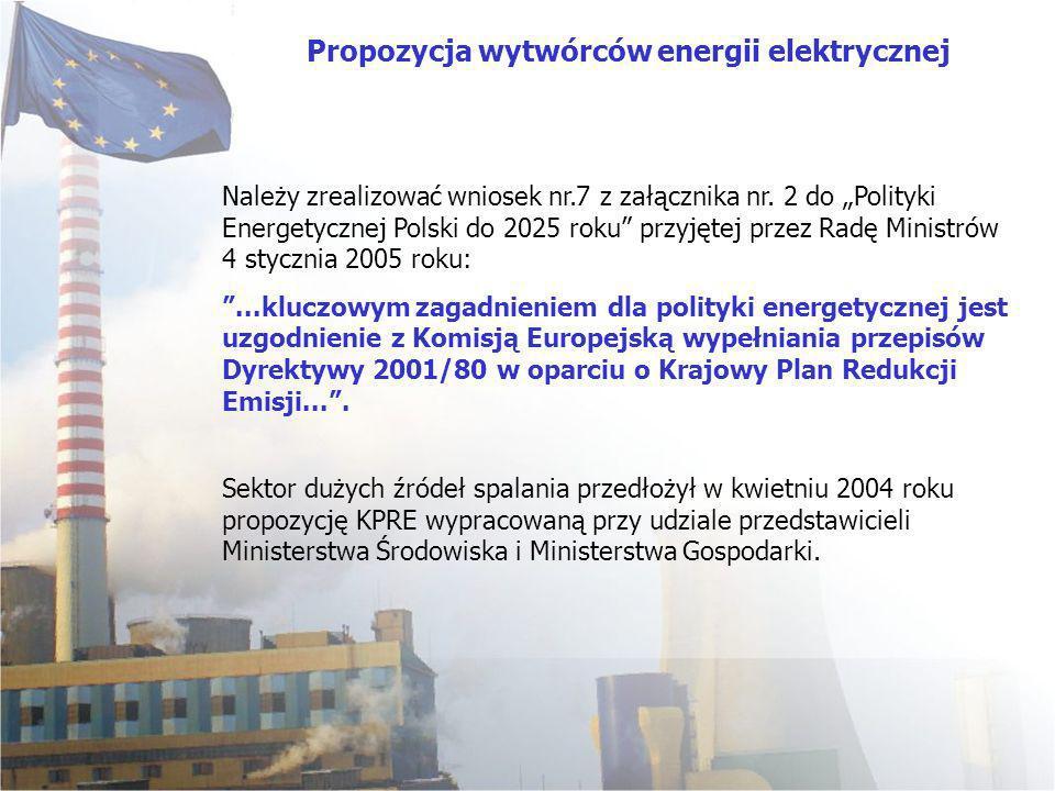 Sektor dużych źródeł spalania przedłożył w kwietniu 2004 roku propozycję KPRE wypracowaną przy udziale przedstawicieli Ministerstwa Środowiska i Minis