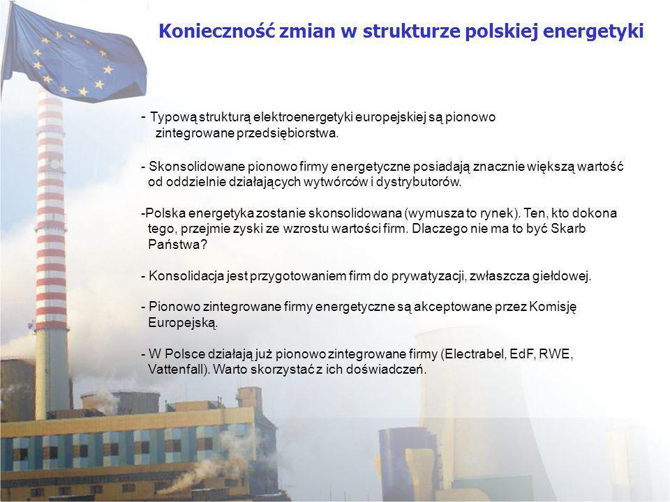 - Typową strukturą elektroenergetyki europejskiej są pionowo zintegrowane przedsiębiorstwa. - Skonsolidowane pionowo firmy energetyczne posiadają znac