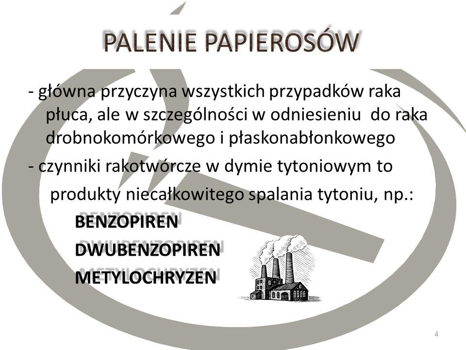 Polska: - 20 tysięcy nowych zachorowań rocznie - 18 tysięcy zgonów Unia Europejska - 241 tysięcy nowych zachorowań rocznie USA - 175 tysięcy nowych za