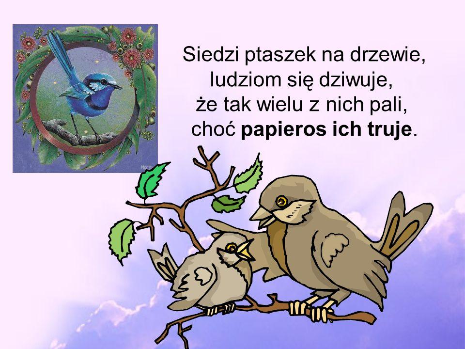 Siedzi ptaszek na drzewie, ludziom się dziwuje, że tak wielu z nich pali, choć papieros ich truje.