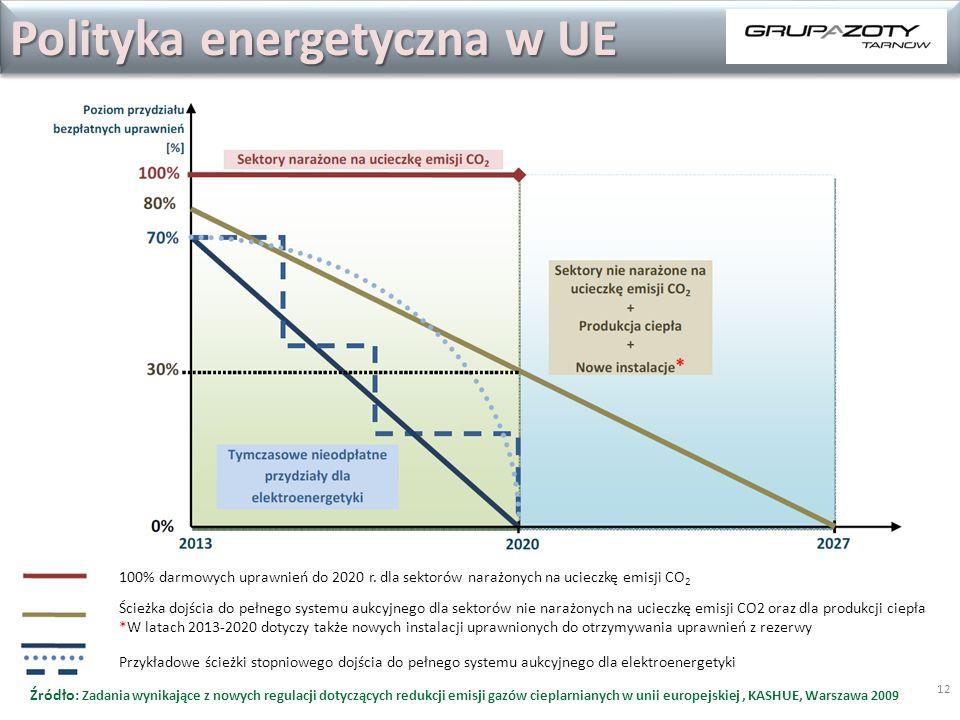 12 Polityka energetyczna w UE 100% darmowych uprawnień do 2020 r. dla sektorów narażonych na ucieczkę emisji CO 2 Ścieżka dojścia do pełnego systemu a
