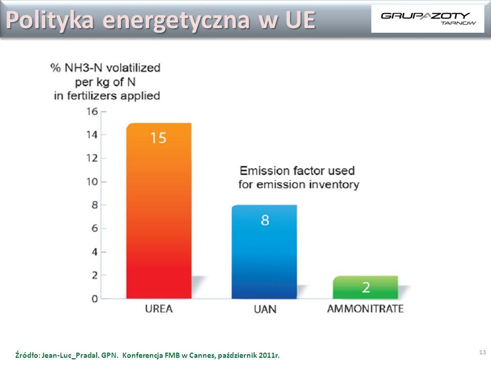 13 Polityka energetyczna w UE Źródło: Jean-Luc_Pradal. GPN. Konferencja FMB w Cannes, październik 2011r.